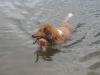 2010-07-04  Schwimmen - 28