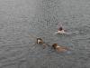2010-07-04  Schwimmen - 51
