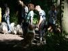 2010-07-25 Colliespaziergang Bult - 21