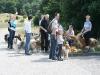 2010-07-25 Colliespaziergang Bult - 3
