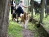 2010-08-11 Schweiz - 88