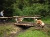 2010-08-13 Fox-Lions treffen - 9