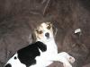 2010-11-23 Berta - 1