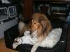 2010-11-23 Berta - 15