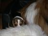 2010-11-23 Berta - 24