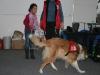 2010-12-04 Obi Linden - 9