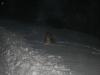 2010-12-20 Schneespaziergang - 101
