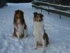 2010-12-20 Schneespaziergang - 14