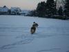 2010-12-20 Schneespaziergang - 25