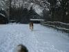 2010-12-20 Schneespaziergang - 39