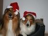 2010-12-24 Weihnachten - 12