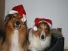 2010-12-24 Weihnachten - 13