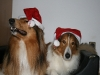 2010-12-24 Weihnachten - 14