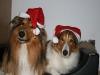 2010-12-24 Weihnachten - 15