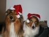 2010-12-24 Weihnachten - 16