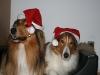 2010-12-24 Weihnachten - 17