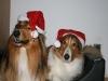 2010-12-24 Weihnachten - 18