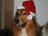 2010-12-24 Weihnachten - 19