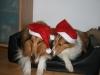 2010-12-24 Weihnachten - 2
