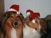2010-12-24 Weihnachten - 22