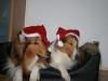 2010-12-24 Weihnachten - 3