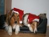 2010-12-24 Weihnachten - 6