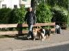 2011-05-05 Pensionsgäste - 4