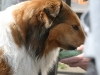 2011-05-28 Obedience - 107