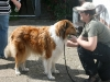 2011-05-28 Obedience - 108
