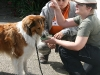 2011-05-28 Obedience - 110