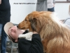 2011-05-28 Obedience - 117