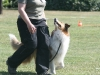 2011-05-28 Obedience - 33