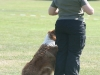 2011-05-28 Obedience - 36