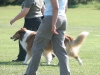 2011-05-28 Obedience - 38