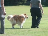 2011-05-28 Obedience - 39
