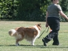 2011-05-28 Obedience - 57