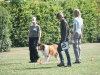 2011-05-28 Obedience - 60