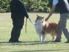 2011-05-28 Obedience - 7