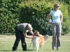 2011-05-28 Obedience - 90