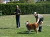 2011-05-28 Obedience - 92