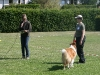 2011-05-28 Obedience - 93