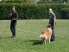 2011-05-28 Obedience - 94