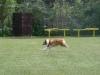 2011-06-12 PHV Laatzen Spasrennen - 10