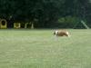 2011-06-12 PHV Laatzen Spasrennen - 11