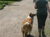 2011-06-12 PHV Laatzen Spasrennen - 13