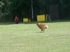 2011-06-12 PHV Laatzen Spasrennen - 34