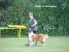 2011-06-12 PHV Laatzen Spasrennen - 46