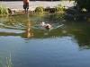 2011-06-28 Schwimmen - 61
