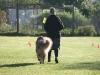 2011-10-01 HSV Springe Anouk - 26