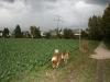 2011-10-19  Pensionsgast - 26